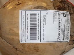 coconuts 2