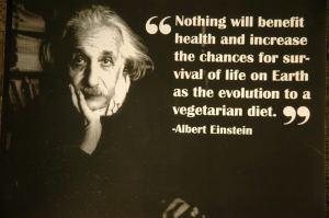 vegetarian-quotes-1